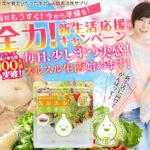 在庫切れ確定!スルスルこうそ990円キャンペーン!新生活のダイエットに向け!在庫切れ前に注文しよう!今が一番最安値で購入できます!